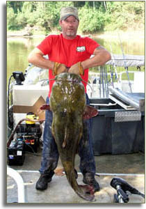 World record flathead catfish kansas for Kansas fish records