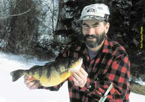 Seo pennsylvania state record yellow perch for Pa fish records