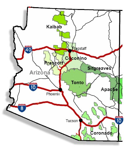 SEO - Arizona National Forest