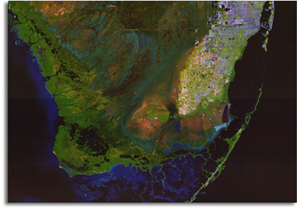 Seo Everglades Satellite Map